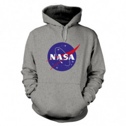 NASA INSIGNIA LOGO HSW