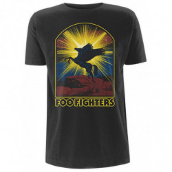 FOO FIGHTERS - WINGED HORSE...